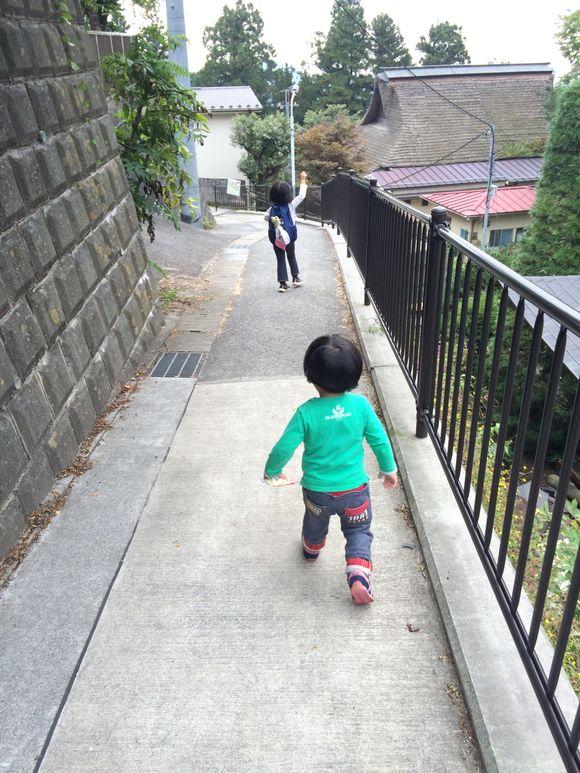 ハイキング(御岳山〜日の出山)